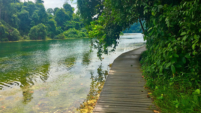 walks and hikes -outdoor activities in singapore